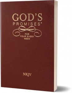 gods-promises-for-your-every-need_flat